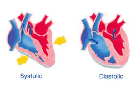 Systolic and diastolic pressure