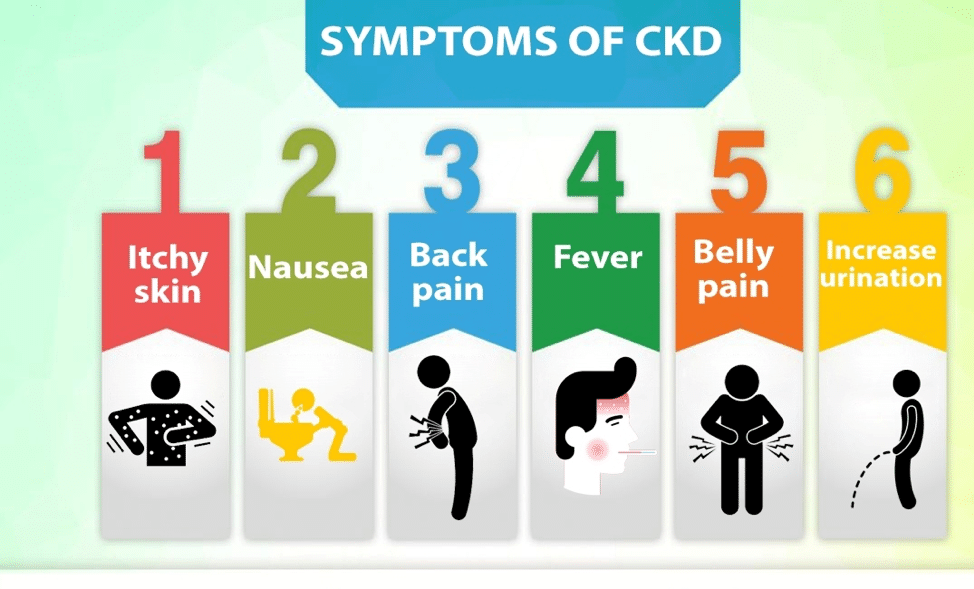 Kidney Disease: Signs and symptoms