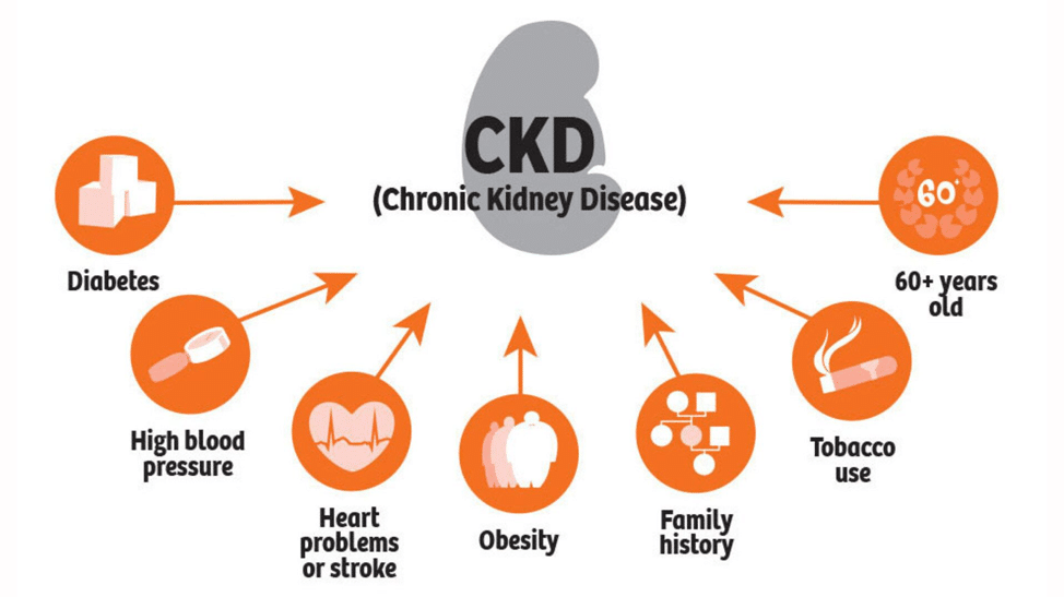 Kidney Disease: Causes